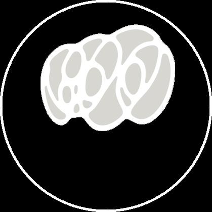 Logo blanco y gris
