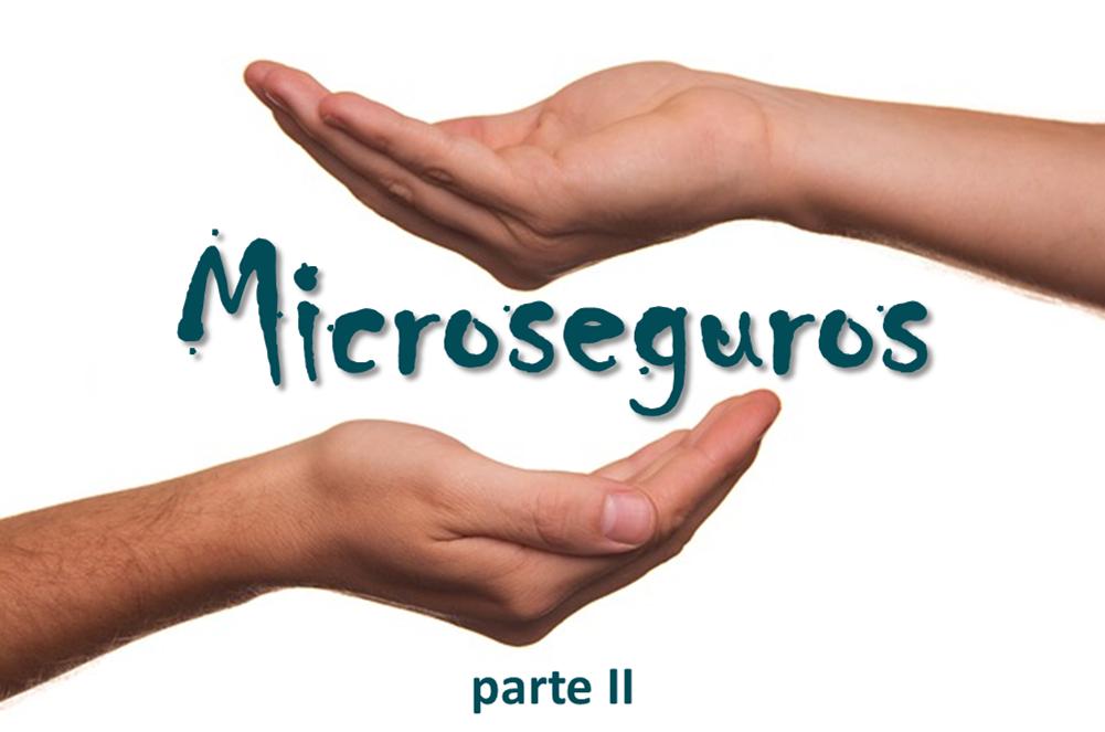 Analizando los Microseguros Sociales (parte II)